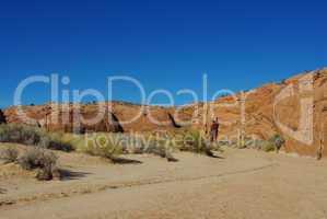 Sand, red rocks and green variations near Peek-a-boo slot canyon, Utah