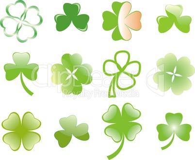 clover or shamrock  for St Patrick?s day