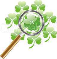 luck search -  four leaf of clover or shamrock under  magnifying glass