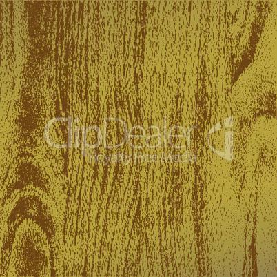 Fragment of lumber