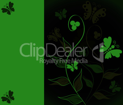 vector greeting card with floral ornament