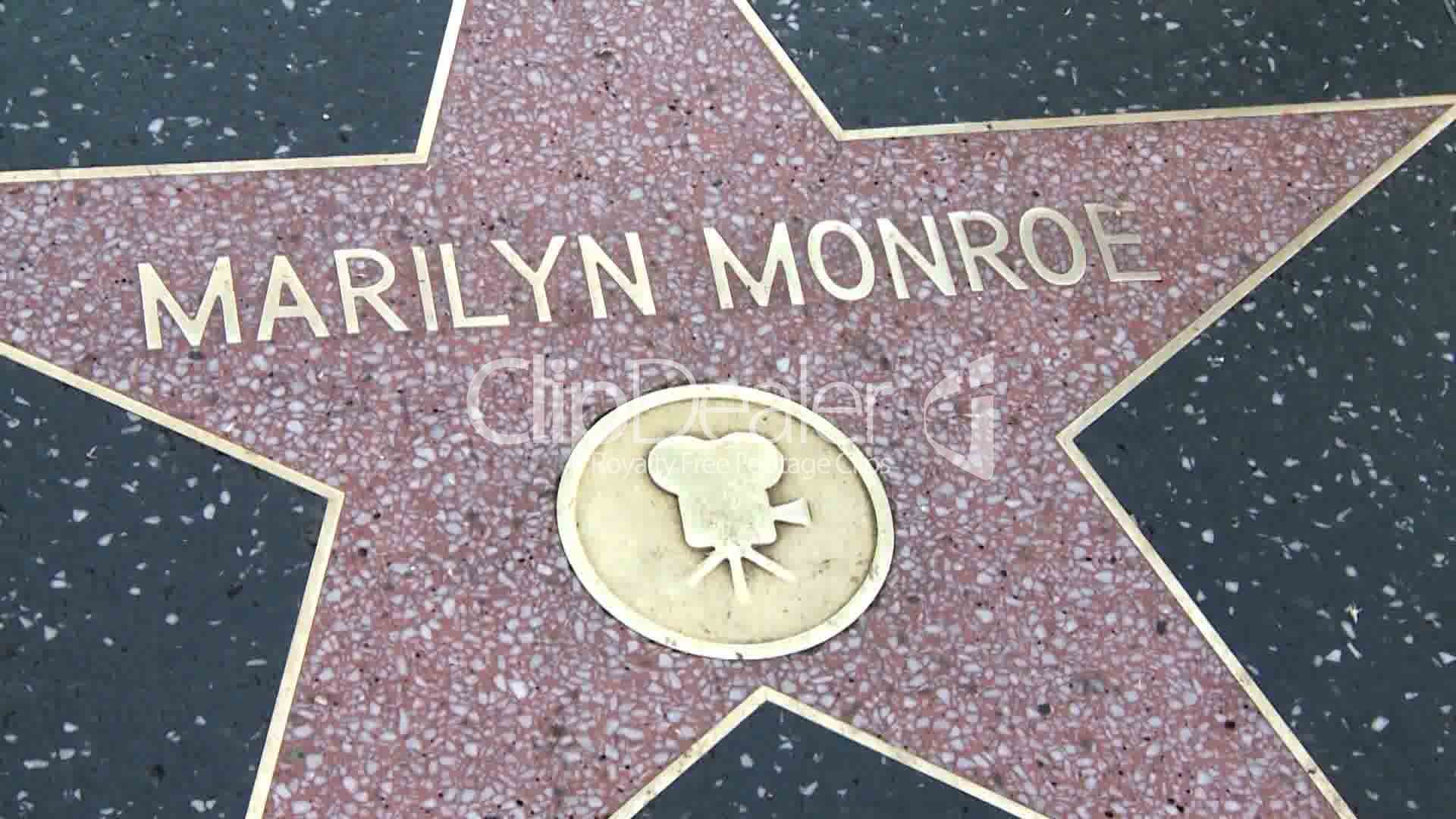 life of fame marilyn monroe The glamorously sordid life story of marilyn monroe has proven irresistible to hollywood filmmakers for years the combination of monroe's blinding external glamour and internal fragility is.