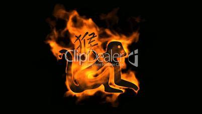 chinese zodiac of fire monkey and handwriting chinese kanji,china tradition festival.