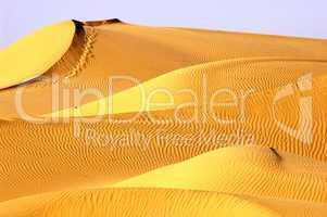 Landscape of golden desert