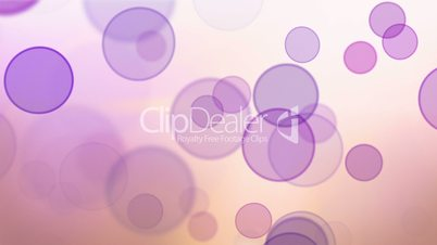 pink violet bokeh circles loop background