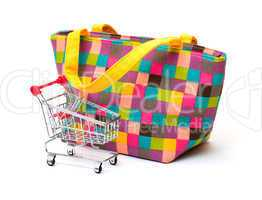 Vibrant Cloth Ladies Handbag with Shopping Cart