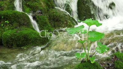 Waterfall in Plitvice National Park, Croatia, Europe
