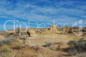 Rocks and desert plants near Notom, Utah