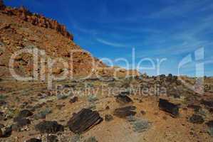 Petrified wood and beautiful rocks, Wolverine Petrified Wood Area, Utah