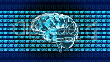 Crystal Brain 1010