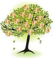 money  tree.with dollar coins