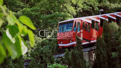 Funicular railway through the vegetation, Funicular entre árboles
