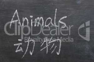 Animals - word written on a smudged blackboard
