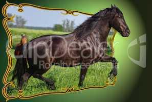 Fotomontage Out of Bounds Pferd in der Landschaft tritt aus dem Rahmen