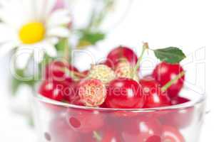 glass cup with cherries and wild strawberries and a bouquet of w