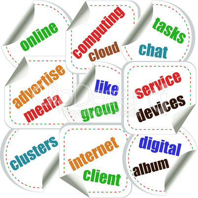 Abstract colorful illustration with various social and network words. Social networking theme