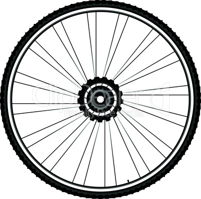 Bike wheel - vector illustration isolated on white background