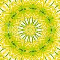 Licht-Mandala Grün Gelb