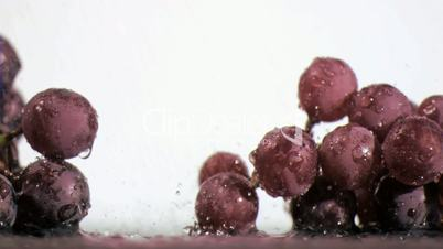 Purple grapes in super slow motion receiving raindrops