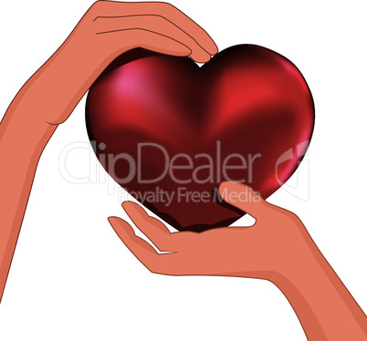 Person hold red heart in hand vector.