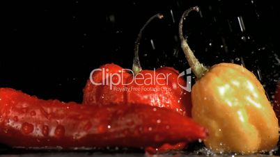 Chili in super slow motion being placed next to peppers