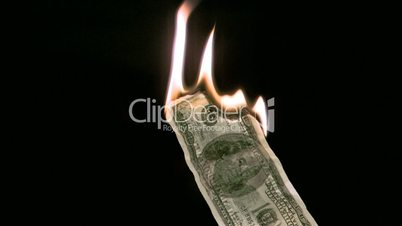 Bank note in super slow motion burning