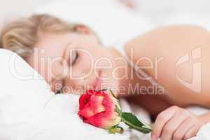 Young woman with a rose sleeping