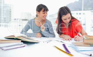 Two studying girls at home doing work