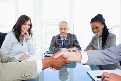Executives shaking hands while their director and two colleagues