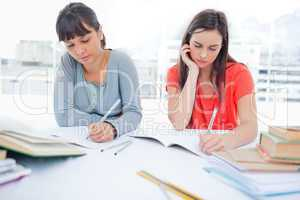 Two girls with hands on their chins studying together