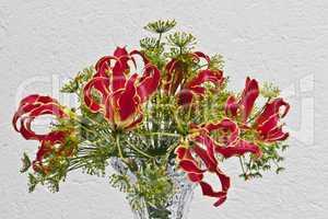 Gloriosa rothschildiana Strauß mit Dillblüten