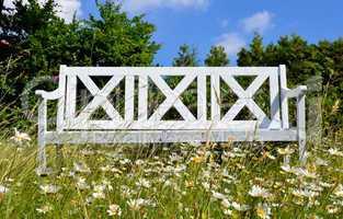 Garten Bank Blumen Wiese