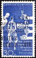 Postage stamp Czechoslovakia 1965 Danube Flood Victims