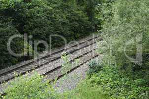 Railway Track Through Trees in Summer