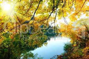 Herbstzauber am Fluss