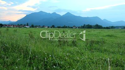 Alps - Mountains with Grass in Front - Harmony Scene