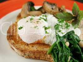 Poached Egg Breakfast 2