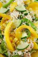 Chicken And Mango Salad 3