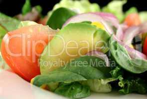 Salad Background 6