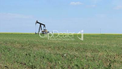 Oil Pump On The Prairies