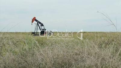 Oil Pump In Scrub Grass