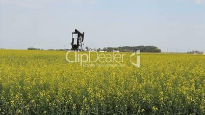 Oil Pump On Canadian Farm