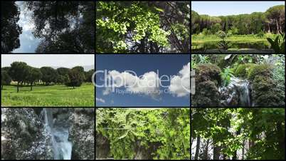 Nature Montage - HD1080