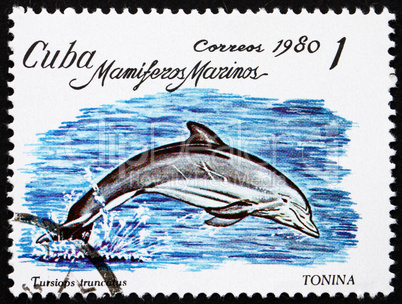 Postage stamp Cuba 1980 Bottlenose Dolphin