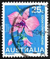 Postage stamp Australia 1968 Cooktown Orchid, Queensland, State