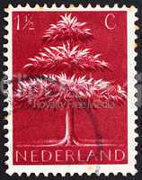 Postage stamp Netherlands 1943 Triple-crown Tree