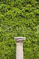 Column Pedestal and Living Wall