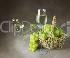 Still life with wine and grapes