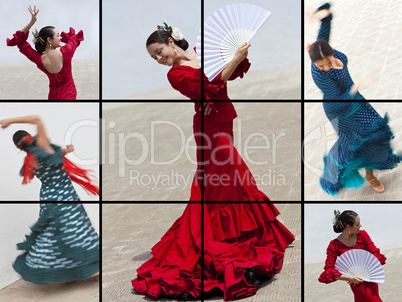Montage of Woman Spanish Flamenco Dancer