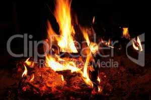 Bushveld Fire